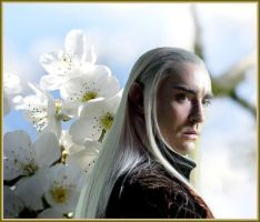 King Thranduil: Ilfirin by Ysydora