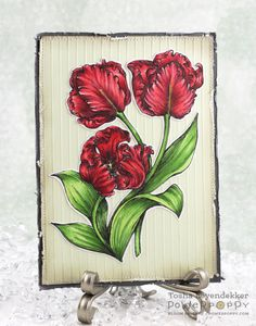 Stamp Talk with Tosh: Re-purposed Window Paned Door with Power Poppy