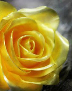 Patiss'Cool: Rose en sucre tiré by Patiss'Cool