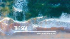 The Sea: Nocturne in D (Original Piano Solo)