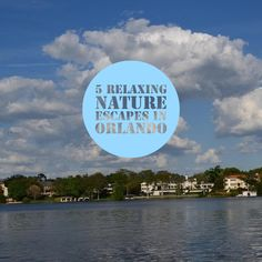 Escape the craziness of the theme parks for an hour or 2 at any of these peaceful Orlando parks! Orlando Parks, Crazy Day, Travel List, Florida, Activities, Beach, Water, Outdoor, The Florida
