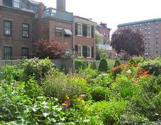 Boston's South End garden