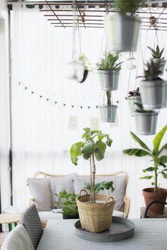 Chillailua terassilla Planter Pots, Interior, Garden, Flowers, Blog, Garten, Design Interiors, Florals, Gardens