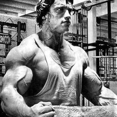 BEAST MODE! #fitness #gym #quote..., www.HealthVG.com/the-muscle-maximizer