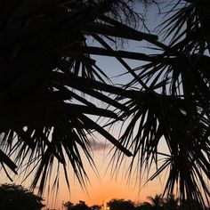 #sunrise by droze