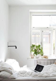 Dream Spaces: Bright & Open