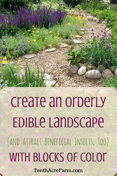 The goal of a good design is to unify a space by providing blocks of color or texture that capture or direct the viewer's eye. Itis one of the most basic landscape design principles. Find out how to do it in your landscape in this post, and attract beneficial insects, too!