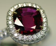 """5ct. Thai """"pigeon's blood"""" ruby with pave diamond halo and band, platinum. Harry Winston"""