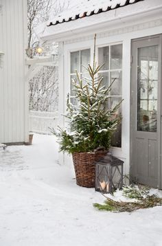 How magical is this winter entery? The outdoor Christmas tree in a basket adds a charming touch of holiday in a simple natural way.