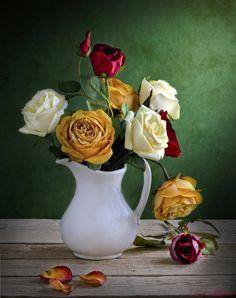 Roses by Tarek Art on 500px