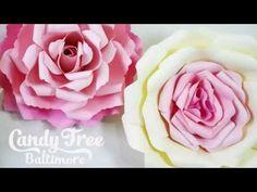 DIY Paper rose backdrop tutorial / Lesson No1 - YouTube