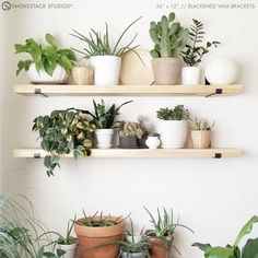 2 thick shelves with brackets make a great storage addition to any room. Solid chunky wood + steel hardware enhances interior styles from modern farmhouse to rustic chic! This product listing includes the following: One natural wood shelf • 2 thick • 100% solid unfinished wood • 🌿 Zero added