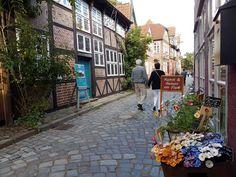Die Elbstraße ist gesäumt von wunderschönen historischen Fachwerkhäusern ©DorothéeMeyer