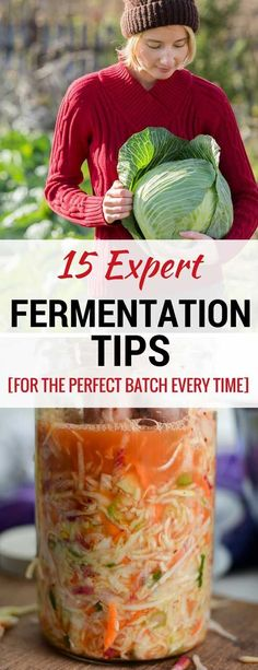 A set of 15 Fermentation Tips to ensure you successfully ferment your sauerkraut. TIP The best way to hold your ferments below the brine. TIP Do you need to sanitize your equipment? TIP A simple tool to test your ferments. And in TIP a gua Sauerkraut Recipes, Cabbage Recipes, Homemade Sauerkraut, Fermentation Recipes, Canning Recipes, Kombucha, Easy Stuffed Cabbage, Fermented Cabbage, Probiotic Foods