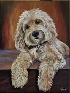 Pictures To Paint, Dog Pictures, Frise Art, Doodle Dog, Dog Portraits, Beautiful Dogs, Animal Paintings, Dog Art, Painting Inspiration