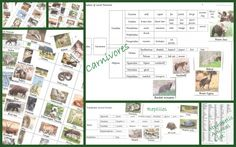 Great Print outs for study of Land Animals: Apologia zoology 3 - animal pics & list, classification chart  http://practicalpages.wordpress.com/free-pages/science-pages/