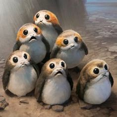 millenniumfulcrum Can you believe how hashtag blessed with are with the porgs.
