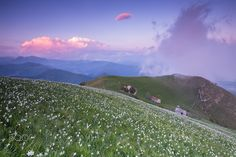 Monte Linzone - This place if we do not go it is impossible to imagine: in spring on this peak in the Bergamo Prealps million daffodils bloom. From here the view is infinite, seeing is believing.