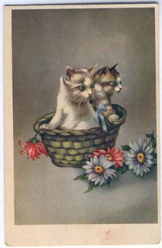 Antique, early Estonian cat postcard...this is still so vibrant!