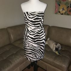 Zebra Strapless cotton blend sun dress Express Dresses Strapless