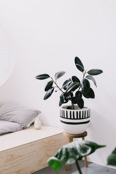 Charcoal Mali Planter by Pop + Scott – Shoppe by Amber Interiors