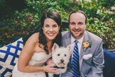 westie flowers wedding - Google Search