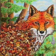 WEBSTA @ katerina.zhunusbayeva - #animorphia #coloring #coloringbook #art #fox