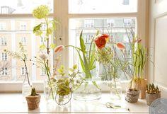 Vårblomster | Lovely Life