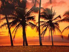 Kauai, Hawaii was amazing.