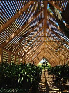 15 Best Garden images | Garden, Garden inspiration, Outdoor