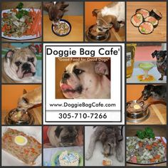 Doggie Bag Cafe Pet Boutique - HomeDoggie Bag Café and Boutique!located at Smiling PetsAnimal Clinic7310 Biscayne Blvd.Miami, Florida 33138 Under the famous  Coppertone Sign… 305-710-7266