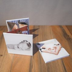 Accordion album. Vive la Memories is a company that works exclusively for photographers. They make photo products and they have a blog for photographers.