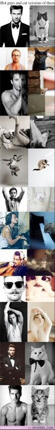 Men and their cat counterparts