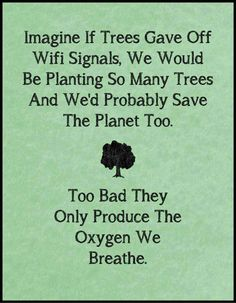 TOP IRONY quotes and sayings : Imagine if trees gave off wifi signals, we would be planting so many trees and we'd probably save the planet too. Too bad they only produce the oxygen we breathe. Life Quotes Love, Great Quotes, Me Quotes, Funny Quotes, Inspirational Quotes, Funny Memes, Daily Quotes, Wisdom Quotes, Humour Quotes