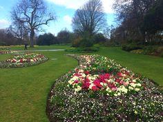 Hyde park. By Chloe M.