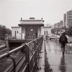 Diana F+ – Black and White film