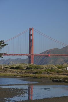 Golden Gate Bridge | San Francisco, CA | UFOREA.org | The trip you want. The help they need.