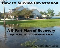 Giftie Etcetera: How to Use a Planner to Survive the Chaos of a Natural Disaster or Flood How To Use Planner, Carpe Diem Planner, Flooded House, Brain Dump, Online Sites, Water Damage, Day Planners, Outdoor Survival, Planner Organization
