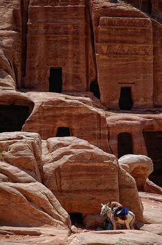 Petra, Jordan I have seen and read some amazing things about Petra. Maybe one day...