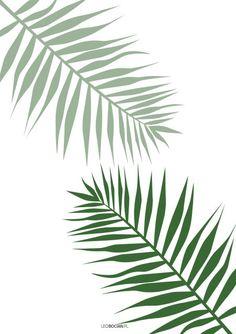 Plakaty botaniczne monstera, palma, urban jungle - do druku Jungle Drawing, Plant Wallpaper, Ink Art, Cute Wallpapers, Canvas Art, Silhouette, Urban, Prints, Banksy