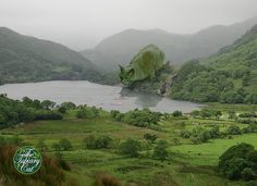 The Topiary Cat tempted by fish in a Welsh lake | Flickr - Photo Sharing!