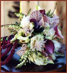 callas, saracena, andromeda bells, hanging amaranthus, and, I think, curcuma.  cool.