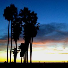Venice Beach Sunset.. there's nothing like it!!