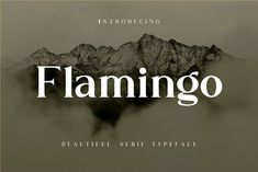Flamingo by Simetris Typeface-Font on @creativemarket