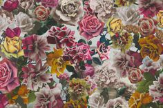 Hand Tinted Rose