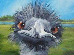 Emu was widely hunted for meat and oil. Do not buy Blue Emu remedy.