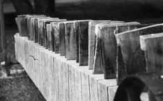 Poţi face multe lucruri din lemn. Dar nu arbori. -Jan Sobotka My Photos, Texture, Wood, Face, Crafts, Madeira, Woodwind Instrument, Surface Finish, Wood Planks
