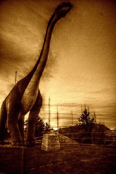 A favorite attraction in the Black Hills: Dinosaur Park - #RapidCity #SouthDakota