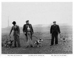 Villamagna Staffords - Allevamento staffordshire bull terrier - Cuccioli staffordshire bull terrier