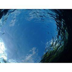 【chipopo317】さんのInstagramをピンしています。 《Looked up at the sky under water. #空#海#ダイビング#沖縄#もう一回行きたい#sky#sea#okinawa#japan#scubadiving#diving#again#underwater》